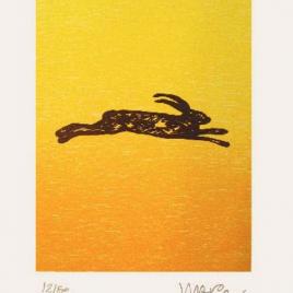 <em>De laatste lemming</em> – Hans Wap (Luxe editie: gesigneerd boek + zeefdruk <em>Rennende haas</em>)