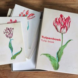 <em>Tulpenboek</em> (Cardbox)